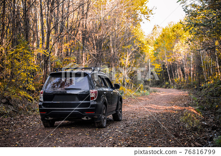 Subaru Forester moving on the road 76816799