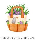 園藝 水生植物 水彩畫 76819524