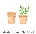植物 植物學 植物的 76819533