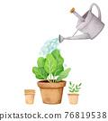 植物 植物學 植物的 76819538