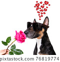 dog valentines love heart mothers and fathers day 76819774