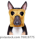 breakfast toast dog early in the morning 76819775