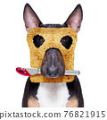 breakfast toast dog early in the morning 76821915