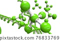 基因 結構 DNA 76833769