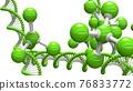 基因 結構 DNA 76833772