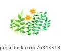 水彩畫 花 植物 76843318