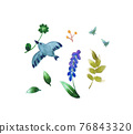 水彩畫 鳥兒 鳥 76843320