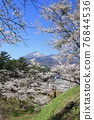 來自Kamega Castle Ruins(福島縣·豬苗代町)的萬代和櫻花 76844536