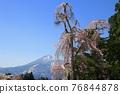 Shiratsu的垂枝櫻花和山崎山(福島縣,豬苗代町) 76844878