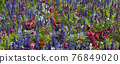 Summer Flowers Background.  Nature Scene With Bloowing Colorful Flowers 76849020