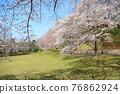 春天 春 花朵 76862924