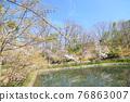 春天 春 花朵 76863007