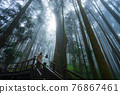 Walkway in Misty forest 76867461