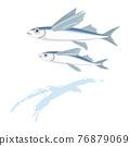飛魚 魚 矢量 76879069