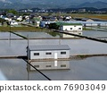 paddy field, rice field, scape 76903049
