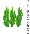 Grass or bushes. Green spring grass. Fresh plants, garden botanical greens, herbs and leaves vector isolated on white. Natural lawn meadow bushes, floral vegetation. Element to create a scene 76904493