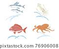 飛魚 魚 矢量 76906008