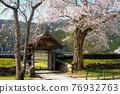 cherry blossom, cherry tree, chinese-style gate 76932763