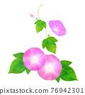 夏天 夏 花朵 76942301