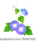 藍色Asagao 76942302