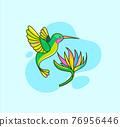 Hummingbird flying near the flower. 76956446