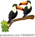 Toucan birds on a branch isolated on white background 76968697