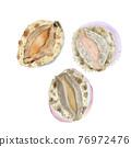 外殼 殼 貝類 76972476