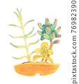 室內盆栽 觀葉植物 景天屬植物 76982390