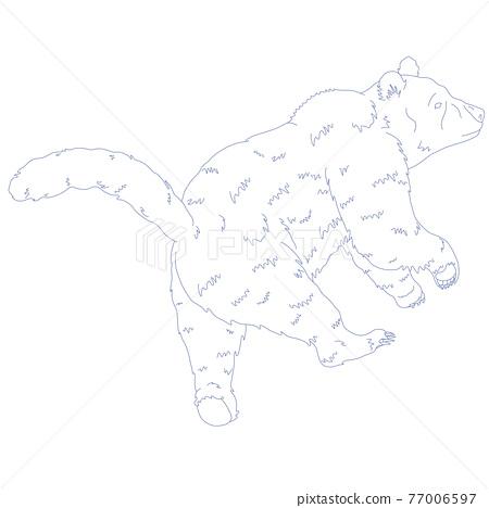 constellation, vector, vectors 77006597