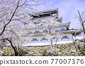 奧古拉城堡是一個美麗的櫻花觀賞時期 77007376