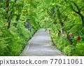 韓國 木 路 77011061