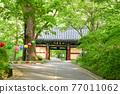 계룡산 갑사의 봄 77011062