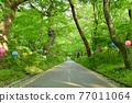 韓國 木 路 77011064