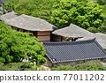 春天 風景 景觀 77011202