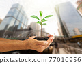 Hands holding green sprout on blurred city background, environmental concept 77016956