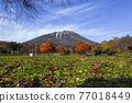 mount yotei, yoteizan, autumn 77018449