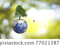 Planet Earth globe ball and growing tree, flying yellow butterfly on green sunny blur background.  77021387