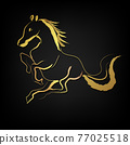 Golden horse with brush paint  isolate on black background 77025518