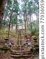 park, parks, spring 77036059