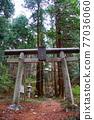 chichibu, spring, Torii Gate 77036060