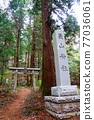 chichibu, spring, Torii Gate 77036061
