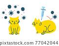 毛孩 貓 貓咪 77042044