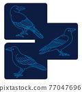 烏鴉 鳥兒 鳥 77047696