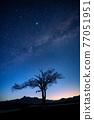 銀河 星空 星星 77051951