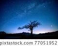 銀河 星空 星星 77051952