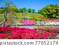日本園林 日式花園 日本庭院 77052174