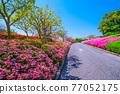 日本園林 日式花園 日本庭院 77052175