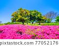 日本園林 日式花園 日本庭院 77052176