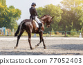 Young girl riding horse at dressage advanced test 77052403