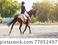 Young girl riding horse at dressage advanced test 77052407